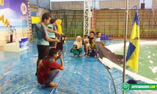 Pengunjung berfoto bersama lumba-lumba 2017_5