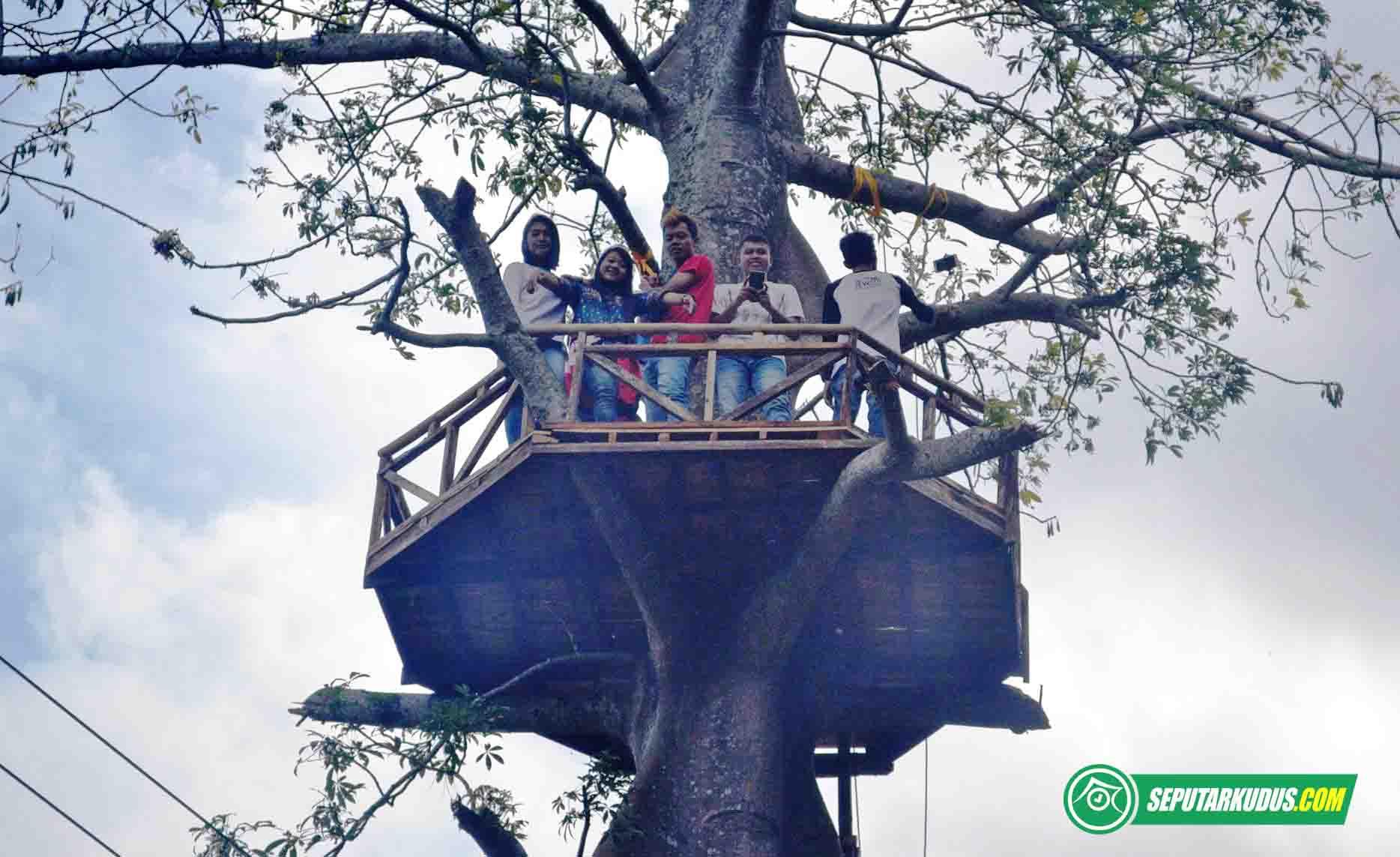 Wisata rumah pohon di Bukit Nggeneng, Rahtawu, Kudus 2017_6_9